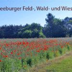 Absage Seeburger Feld-, Wald- und Wiesenlauf - der Corona-Verscheuch-Lauf bleibt bestehen